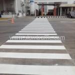 ตีเส้นทางข้ามถนน โค้ก ปทุมธานี