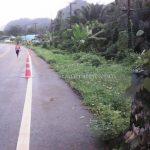 งานจ้างเหมาทำการติดตั้ง guard rail แขวงทางหลวงระนอง ปริมาณงาน 528 เมตร เสาเสริมจำนวน 88 ต้น