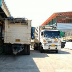 สีตีเส้นจราจร 30% สีเหลือง TRI-STAR (มอก.) จำนวน 1,500 ถุง ส่งออกไปประเทศพม่า