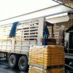 สีตีเส้น 30% สีเหลือง TRI-STAR (มอก.) จำนวน 1,500 ถุง ส่งออกไปประเทศพม่า